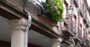 Inicio Ayuntamiento De Alcalá De Henares