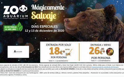 Precios especiales para los alcalaínos que visiten el Zoo los días 12 y 13 de diciembre y Faunia los días 2 y 3 de enero